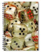 Roll The Dice Spiral Notebook