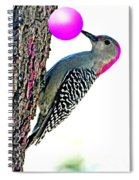 Rolling Roger Gumball Spiral Notebook
