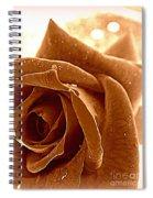 Romance Spiral Notebook