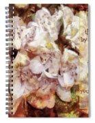 Romans 12 1 Spiral Notebook