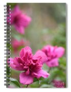 Romantically Pink Spiral Notebook