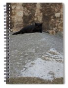 Rome Cat Spiral Notebook