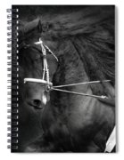 Romke 401 Long Line Spiral Notebook