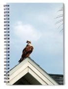 Roof Ornament Spiral Notebook