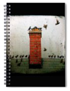 Roof Top Hoppers Spiral Notebook