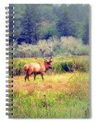 Roosevelt Bull Elk Spiral Notebook
