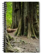 Root Feet Collection 1 Spiral Notebook