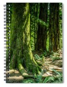 Root Feet Collection 3 Spiral Notebook