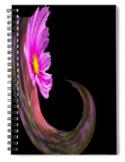 Root Polar View Spiral Notebook