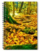Root Steps Spiral Notebook