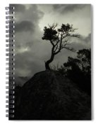 Rooted In Stone Spiral Notebook
