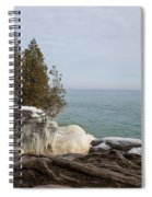 Rooted In Winter Spiral Notebook