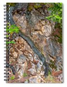 Roots And Rocks Spiral Notebook