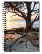 Roots Beach Spiral Notebook