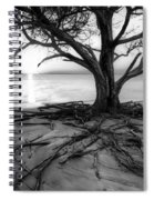 Roots Beach In Black And White Spiral Notebook