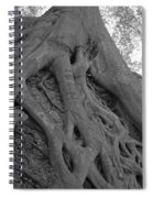 Roots II Spiral Notebook