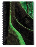 Roots Of A Giant Tree, Daintree Spiral Notebook