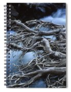 Roots Over Ozark Stream Spiral Notebook