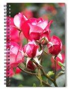 Rosa Molly Mcgredy Spiral Notebook