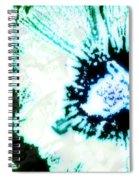 Rosa Sinensis Abstract Spiral Notebook