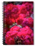 Rose 134 Spiral Notebook