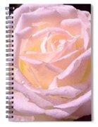 Rose 169 Spiral Notebook