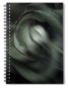 rose 18X24 1 Spiral Notebook