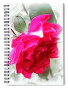 Rose - 4505-004 Spiral Notebook