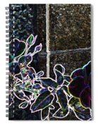 Rose Aglow Spiral Notebook
