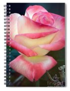 Rose Among The Thorns Spiral Notebook