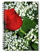 Rose And Baby's Breath Spiral Notebook