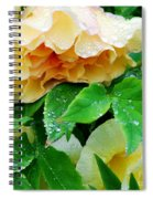 Rose And Leaves On A Rainy Day Spiral Notebook