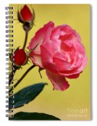 Rose And Rose Buds Spiral Notebook