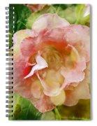 Rose Begonia In Pink Spiral Notebook