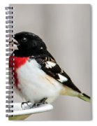 Rose-breated Grosbeak Feeding Spiral Notebook