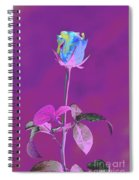 Rose Bud Spiral Notebook