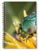 Rose Chafer Spiral Notebook