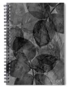 Rose Clippings Mural Wall - Black And White Spiral Notebook