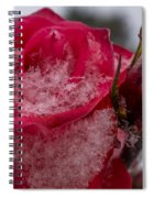 Rose Flakes 1 Spiral Notebook