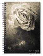 Rose From Another Day Spiral Notebook