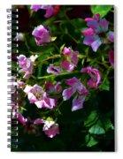 Rose Garden 2 Spiral Notebook