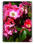 Rose Garden 4 Spiral Notebook