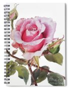 Watercolor Of Pink Rose Grace Spiral Notebook