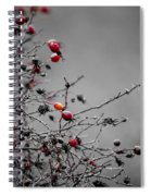 Rose Hip Red Spiral Notebook