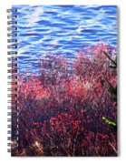 Rose Hips By The Seashore Spiral Notebook