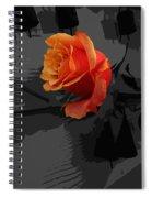 Rose IIi - A Message Spiral Notebook