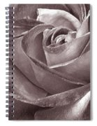 Rose In Black And White Spiral Notebook
