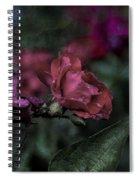 Rose In The Rain Spiral Notebook