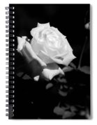 Rose - Infrared Spiral Notebook