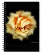 Rose Light Spiral Notebook